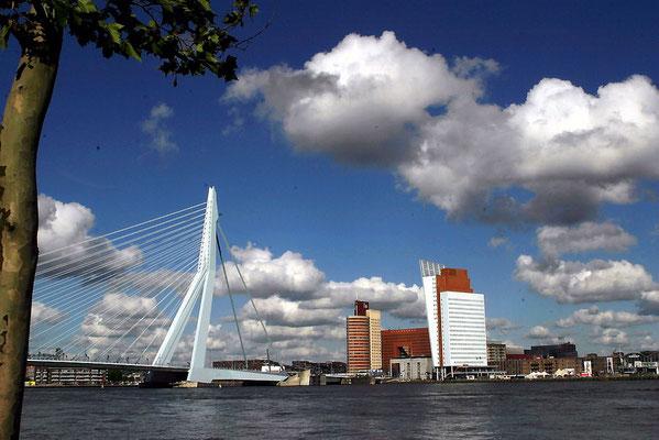 Eine winzige Auswahl aus unserer Fotodatenbank! (Rotterdam)