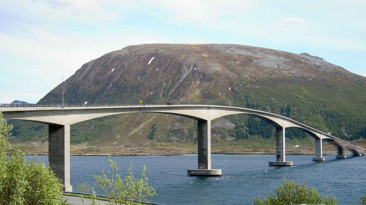 geschwungene Brücken überall