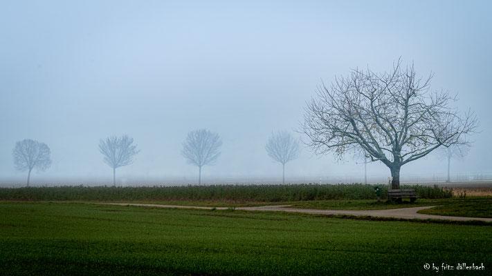 Nebel, Aargau