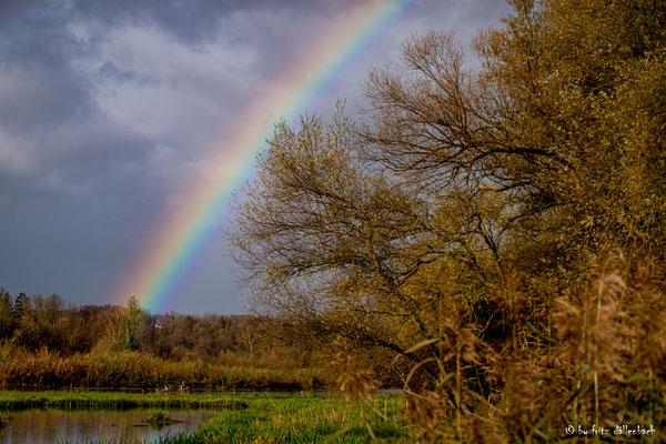 Regenbogen am Flachsee