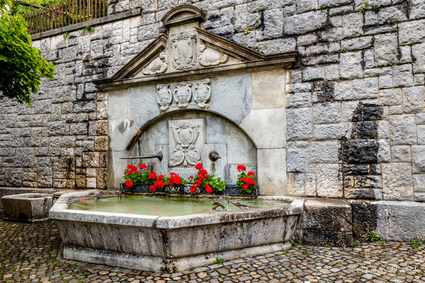 Brunnen, Regensberg