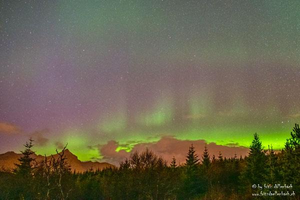 Nordlichter, Leknes Lofoten