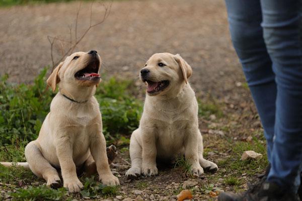 Ole und Charlie