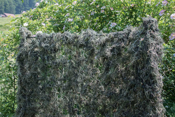 Tarnnetz für die Krähenjagd (Grün)