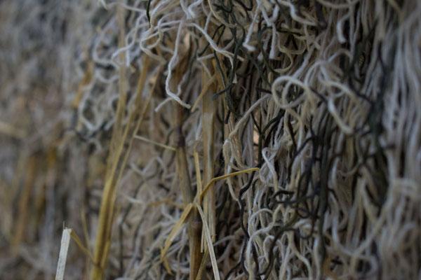 Tarnnetz für die Krähenjagd (Weizen, Gelb - Braun)