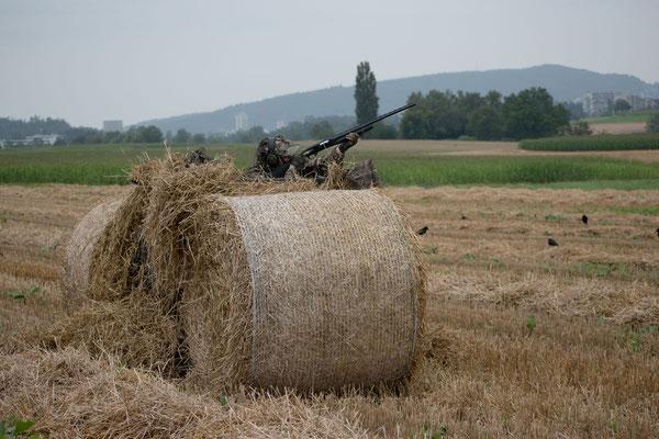 Tarnschirm auf offenem Feld auf einem Stoppelfeld im August