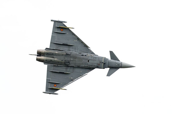 Euro fighter