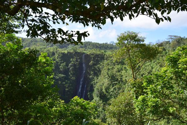 Bild: Wasserfall auf Samoa