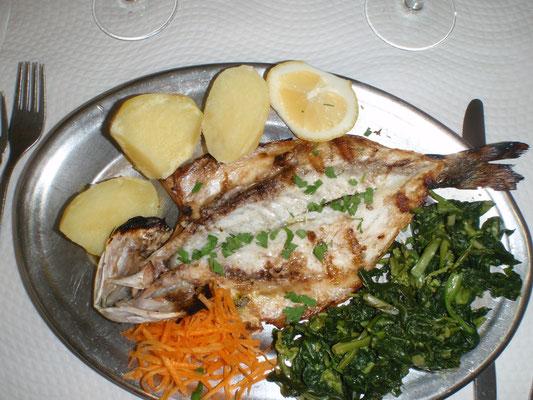 Bild: Fisch in Lissabon