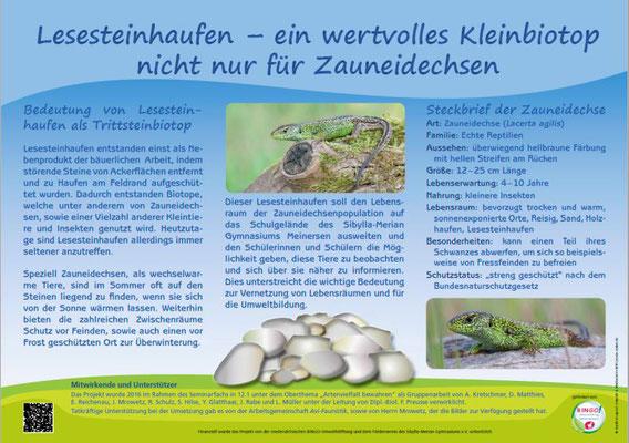 Das Informationsschild - danke an das Umwelt- und Medienbüro Witt (umbw)