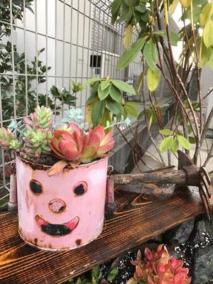 もともと有ったブリキの植木鉢も、空間造りのお手伝いを…