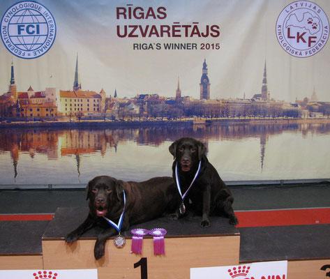 Gilbron Pride Navigator Master Nose & Nixie Sparkling Smile - two Riga Veteran Winners 2015