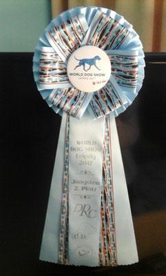 Gilbron Pride Zoom In Maigret - 2nd best male puppy, World Winner 2017
