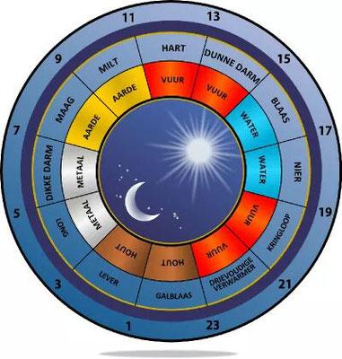 De 5 elementen en bijbehorende meridianen
