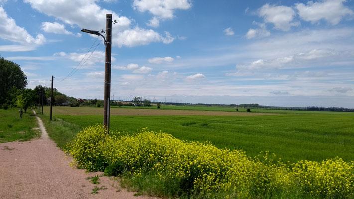 ...die Wege in Sachsen-Anhalt sind etwas speziell ...
