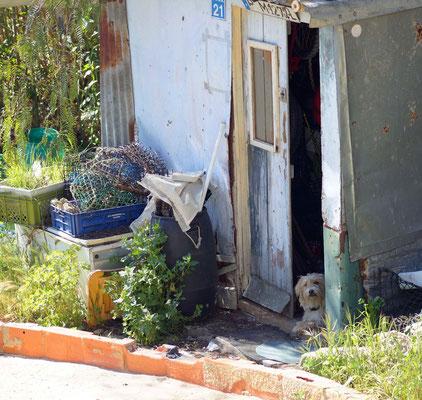 Fischerhütte in Ferragudo