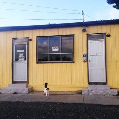 Puerto Natales: Katze vor einem Haus.