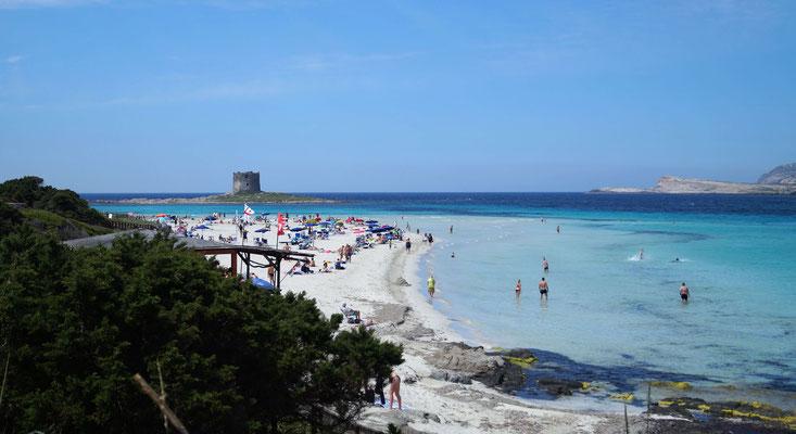 Sardinien: La Pelosa