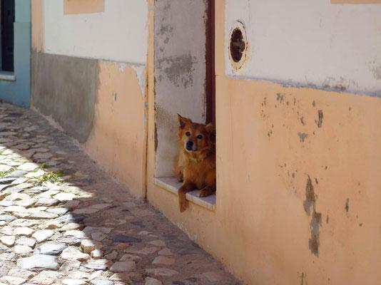 In den Straßen von Ferragudo