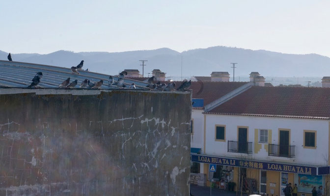 Vila Nova de Milfontes am Morgen