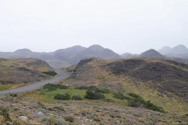 Torres del Paine: Landschaft in grün-braun-grau