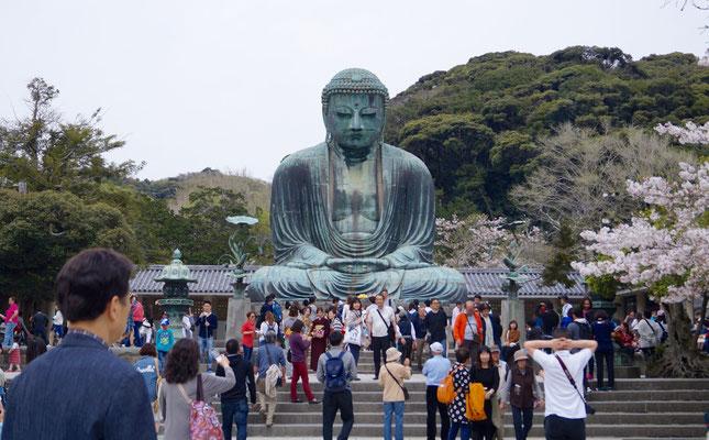Der Giant Buddha Kamakuras