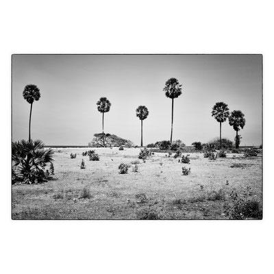 Nilaveli, Sri Lanka 2014 © OBS