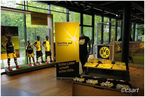 der BVB hat auch eine eigene Stiftung
