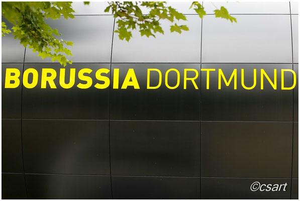 Wir kommen wieder...zur Bundesliga