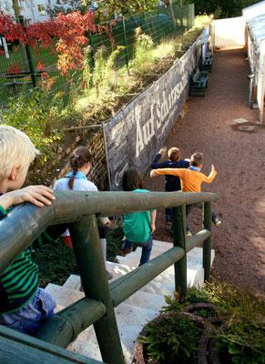 Kids auf Entdeckungstour