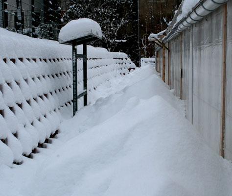 ... aber langsam reichts mit dem Schnee.