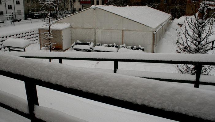 Hübsch, die winterliche Pracht ...