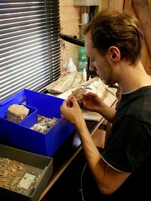 Max puzzelt einen Fund zusammen