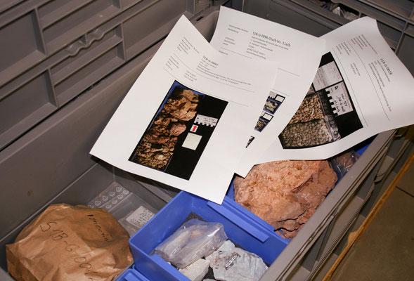 Gesteinsproben und Dokumente