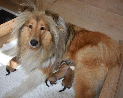 Yulia war eine ganz tolle Mama und ist immer aufmerksam