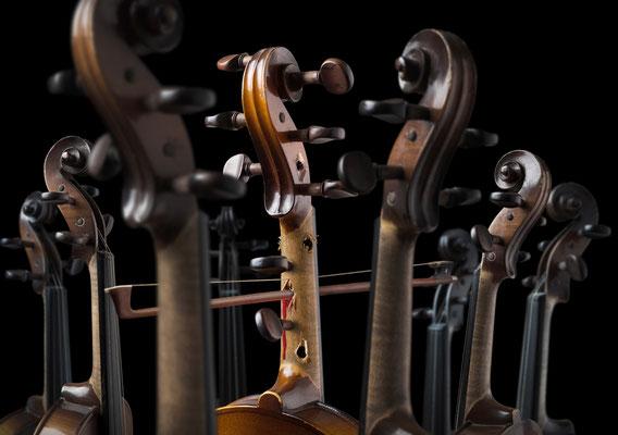 Diva de violina · Copyright by Olaf Bruhn