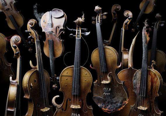 Violina diábolo · © Olaf Bruhn 2016