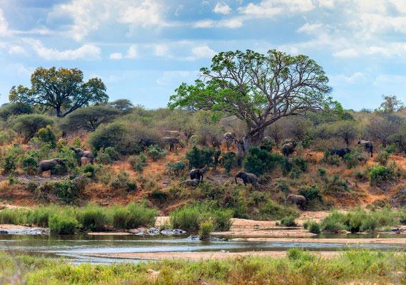 Südafrika · Copyright by Olaf Bruhn