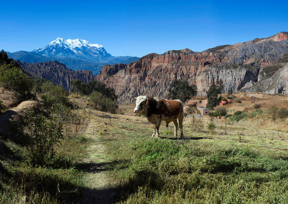 Peru · Copyright by Olaf Bruhn