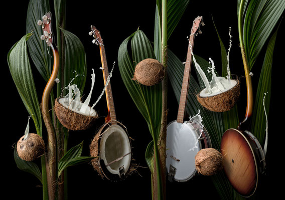 Coconut banjo  · Copyright by Olaf Bruhn