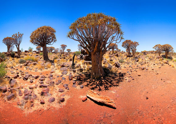 Namibia 2012 · Copyright by Olaf Bruhn