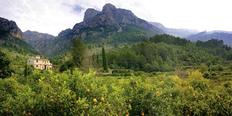 Landschaft bei Sollér