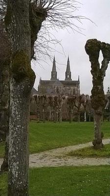 ... située à proximité de la cathédrale