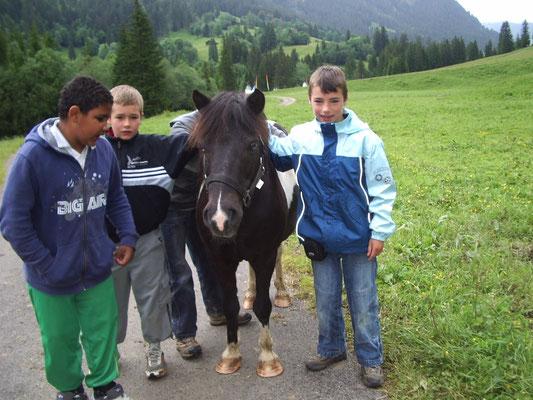 Der wichtige Kontakt mit den Tieren auf der Alp