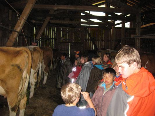 Besuch des Nachbar-Bauern und seiner Tiere