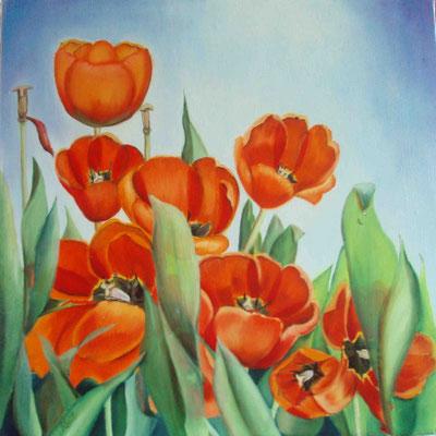 """""""Tulpen"""" - Öl auf Leinwand, 60 x 60, 2009"""