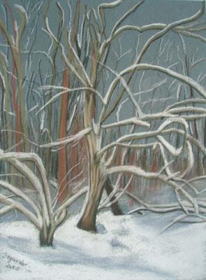 """""""Bremen - Bäume mit Schnee"""" - Pastell, 30 x 40, 2010"""