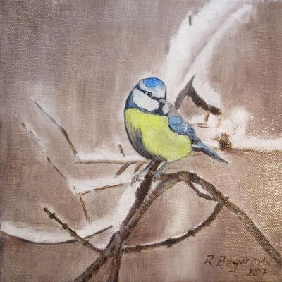 """""""Blaumeise im Schnee"""", Öl auf Leinwand, 20 x 20, 2017"""