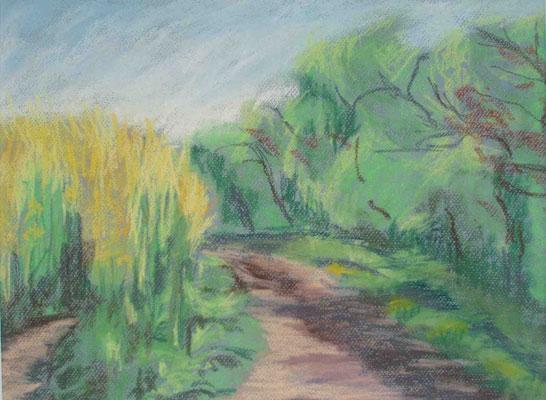 """""""Ahrenshoop - Weg am Rapsfeld"""" -  Pastell, 2008"""