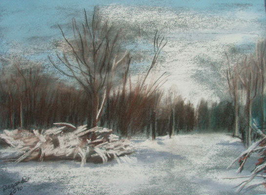 """Bremen - Weg zum Krimpelsee"" - Pastell, 30 x 40, 2010"